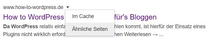 Google ähnliche Seiten