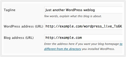 Wordpress Address